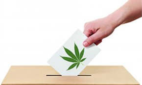60% indicate they'll vote to legalise personal cannabis use
