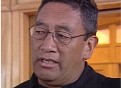 New Mana Party splits Maori Party support